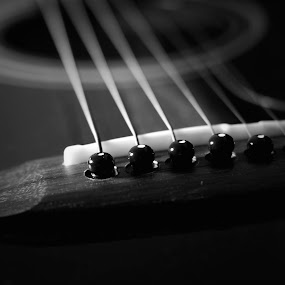 Tuners by Ewan Arnolda - Artistic Objects Musical Instruments ( music, life, creative, tuners, string, white, artistic, still, guitar, fun, black, photography )
