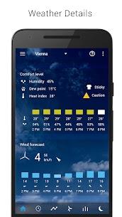 Transparent clock weather Premium 3