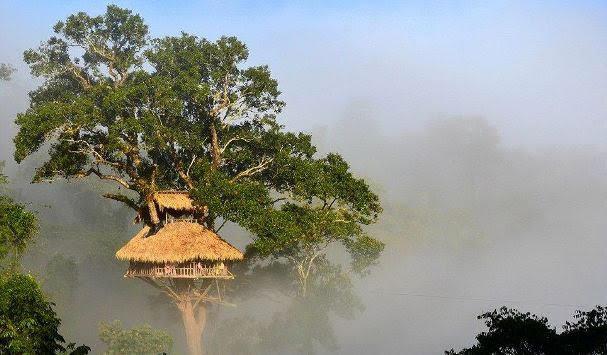 Bokeo Nature Reserve