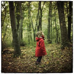 Little Red Riding Hood by Sasa Lazic - Babies & Children Child Portraits ( canon, sasa lazic, color, f1.4, mood, 50mm, forest, square, bokeh, portrait )