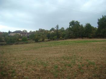 terrain à Balaguier-d'Olt (12)