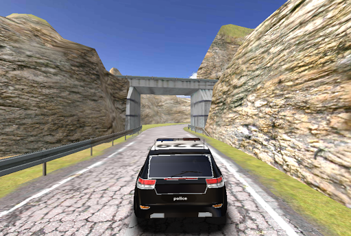 SUV Police Driving 3D