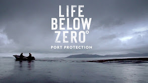 Life Below Zero: Port Protection thumbnail
