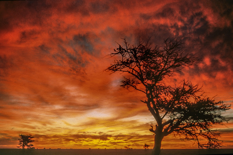 Antico tramonto africano. di Sognatrice