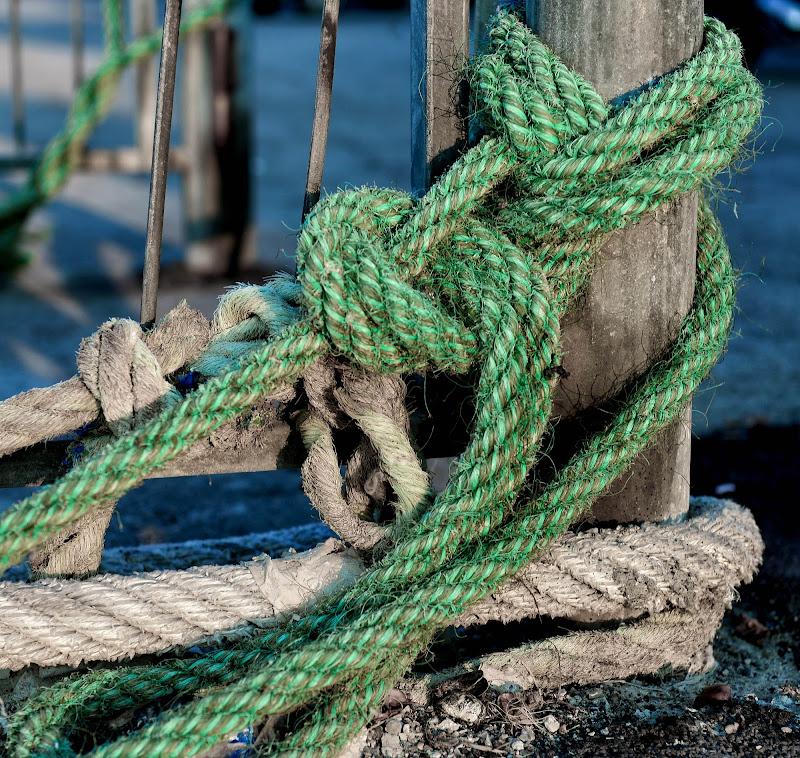 Intreccio verde di Diana Cimino Cocco