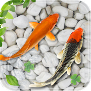 Fish Live Wallpaper 2018: Aquarium Koi Backgrounds
