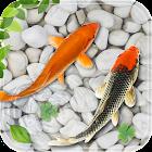 Fish Live Wallpaper 2018: Aquarium Koi Backgrounds icon