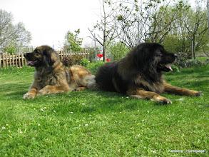 Photo: Clara links & Yaager rechts - 1.5.2016