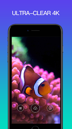 Live Wallpaper 4K screenshot 3