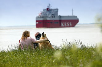 Photo: Idylle am Deich Fotograf: Karl-Heinz Krämer