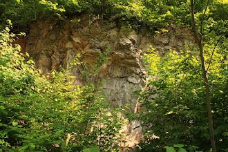 Photo: A Láz-tető É-i lábánál található növényzettel benőtt egykori kis kőfejtő a Gutensteini Mészkő Formáció (alul) és a Steinalmi Mészkő Formáció (felül) határ-alapszelvénye