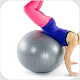 Stability Ball workout Exercise - Ball Exercise for PC-Windows 7,8,10 and Mac 1.0