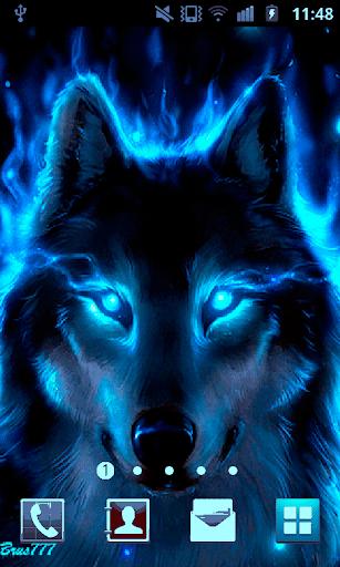 玩免費個人化APP 下載Wolf Live Wallpaper app不用錢 硬是要APP
