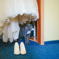 Wedding photographer Darya Agafonova (dariaagaf). Photo of 19.02.2018