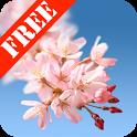 Sakura Free Live Wallpaper icon