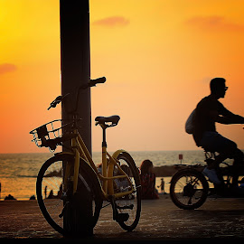 telaviv by Abu  Janjalani Abdullah - Transportation Bicycles ( bicycle, transportation )