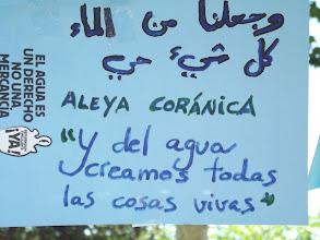 Photo: Aleya Coránica