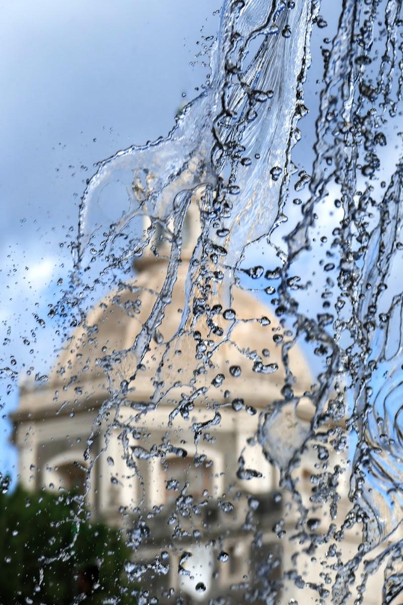 forme d'acqua  di Zino