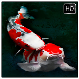 Koi fish wallpaper hd android apps on google play for Koi fish games