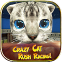 Crazy Cat Rush Racing Run Kitty Craft icon