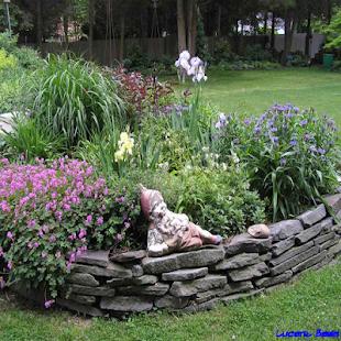 Garden Border Design - náhled