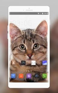 Theme for Videocon V1414 Cat Wallpaper - náhled