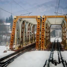 by Nastasache Florin Ionut - Transportation Trains