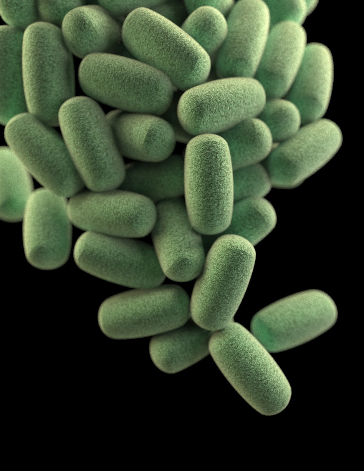 Green bacteria build up causing digestive disorders