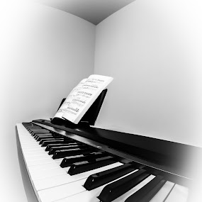 Silent music by Anatoliy Kosterev - Black & White Objects & Still Life ( music, piano, black and white, wide angle, objects )