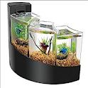 Aquarium Design icon