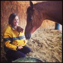 Photo: Akela meets a horse