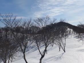 東峰の手前で県境方面(左)へ