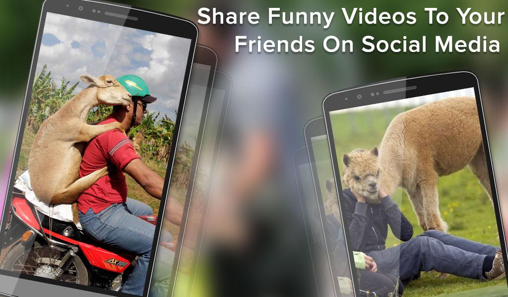 Funny Videos for Whatsapp- screenshot