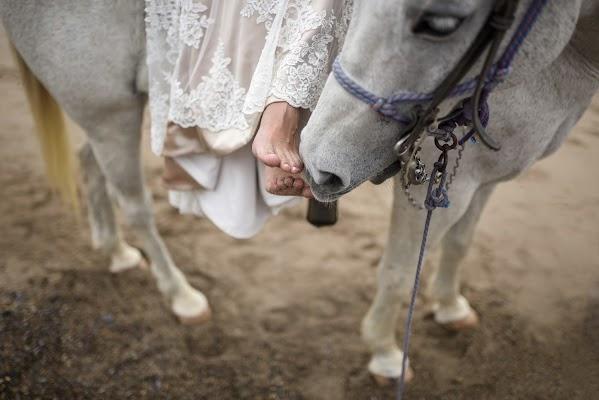 Wedding photographer Eva Sica (sica). Photo of 20.09.2016