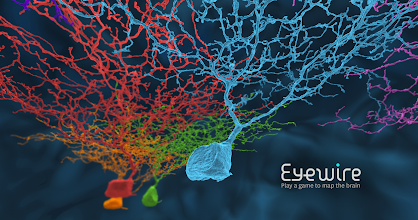 Photo: Neurons discovered by gamers on eyewire.org  Flying through neurons:  https://www.youtube.com/watch?v=5CqOi7W-lP8