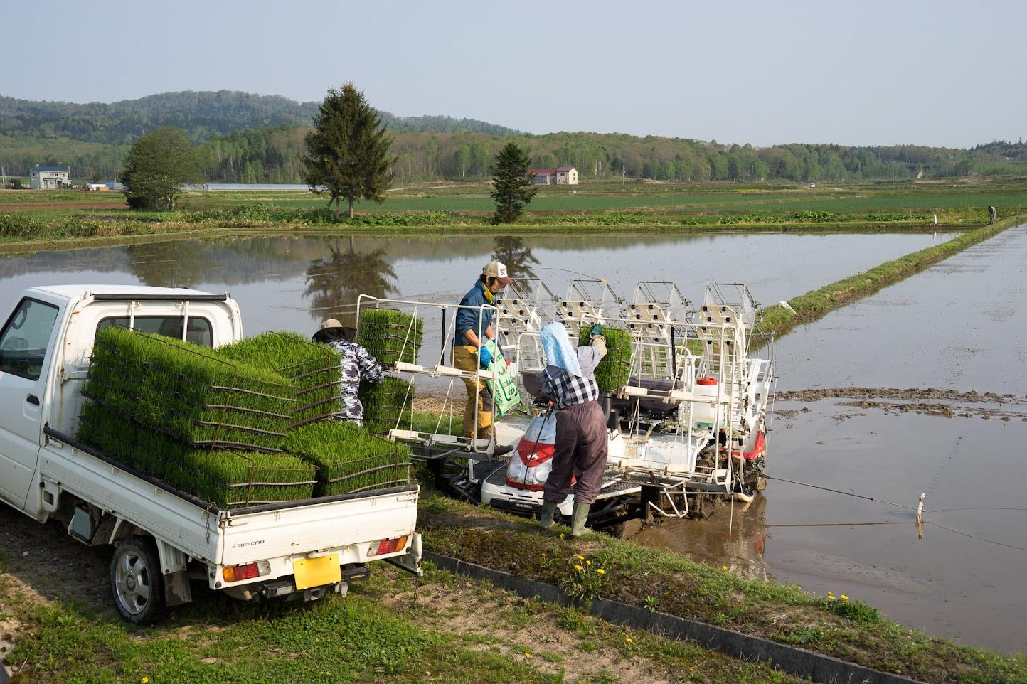 田植え機に肥料・育苗箱をセット