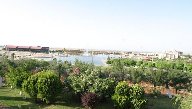 Harran Üniversitesi GooglePlus  Marka Hayran Sayfası