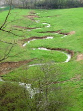 Photo: ruisseau en état d'ivresse