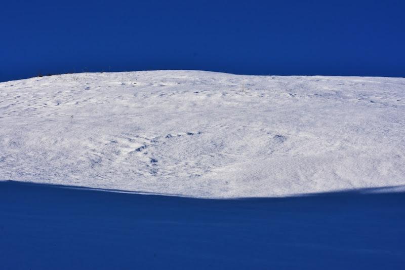 Minimal white  di Boboparra