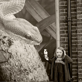 Molly at the Zoo by Antony Sendall - Babies & Children Children Candids ( child, london zoo, giant snake, snake, zoo, comic, small girl, poster, funny, ice cream, zsl, candid )