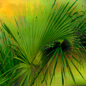 Green Plant by Edward Gold - Digital Art Things ( orange, digital photography, green leaves, yellow, bright, green plant, softness, digital art,  )