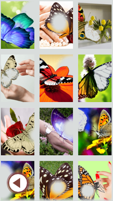 Butterfly Photo Frame Collage - screenshot