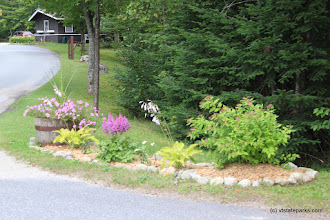 Photo: Flowers and contact station at Stillwater State Park