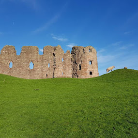 Brough Castle by Phil Sykes - Buildings & Architecture Decaying & Abandoned
