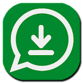 Story Saver For Whatsapp