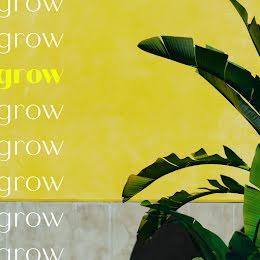 Grow Grow Grow - Instagram Post item