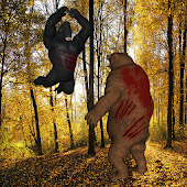 Gorilla Bear Battle