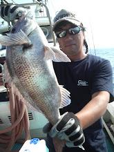 Photo: 真鯛でした。 養殖みたいなボディの色ですが・・
