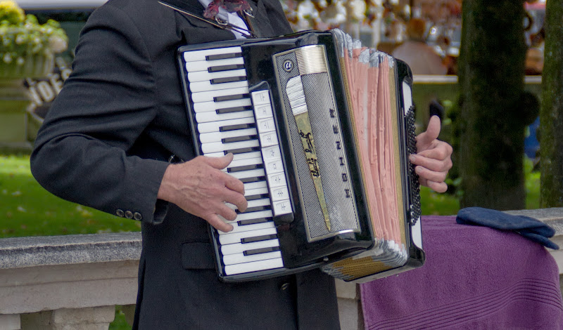 La fisarmonica suona per te.. ricordo di un amore di tanto tempo fà di vaiolet