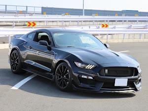 シェルビー GT350 のカスタム事例画像 Black Cobraさんの2019年08月17日23:54の投稿